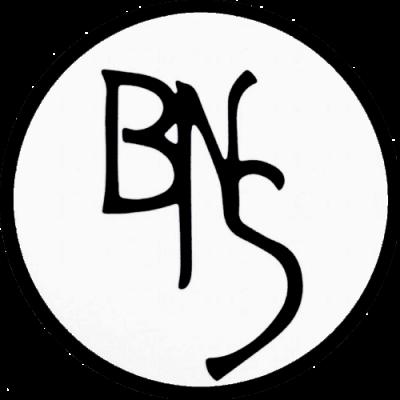 The beauty and Nail Studio Logo